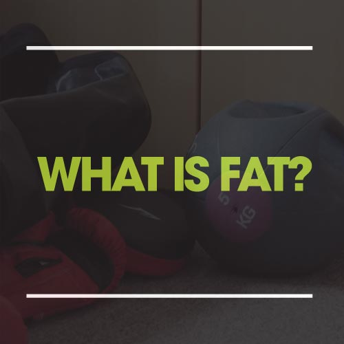 what is fat