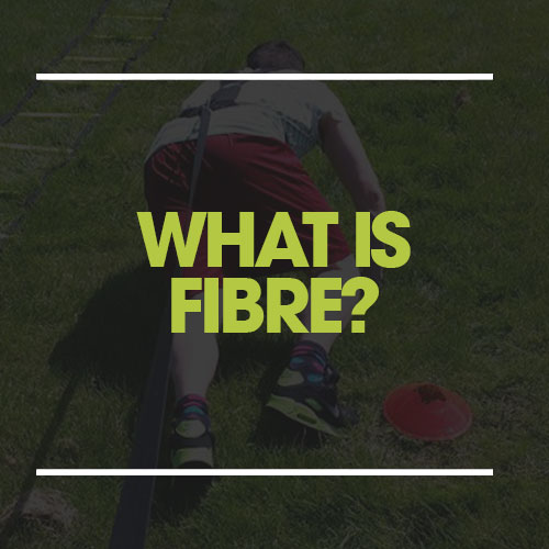 what is fibre